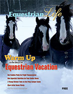 Northeast Equestrian Life cover from January 2018